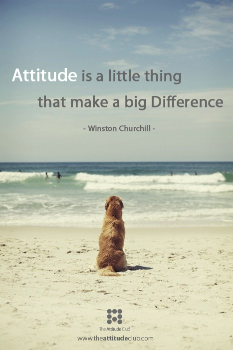 1000+ Images About Positivity! On Pinterest