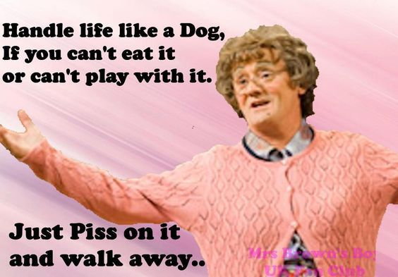 Pretty funny & stupid. :P Mrs Browns Boys D' Movie