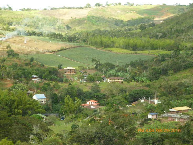Puente Palo - La Cumbre - Valle de Cauca