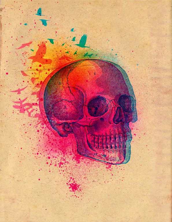 The Fleeting | Christopher Kemp: Tattoo Ideas, Skulls, Awesome Tattoo, Color, Illustration, Christopher Kemp, Skull Art