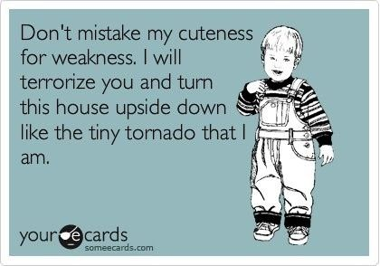 Ahhhh!! So true!!Laugh, Quotes, Sons, Children, Funny Stuff, So True, Ecards, Kids, Tiny Tornados