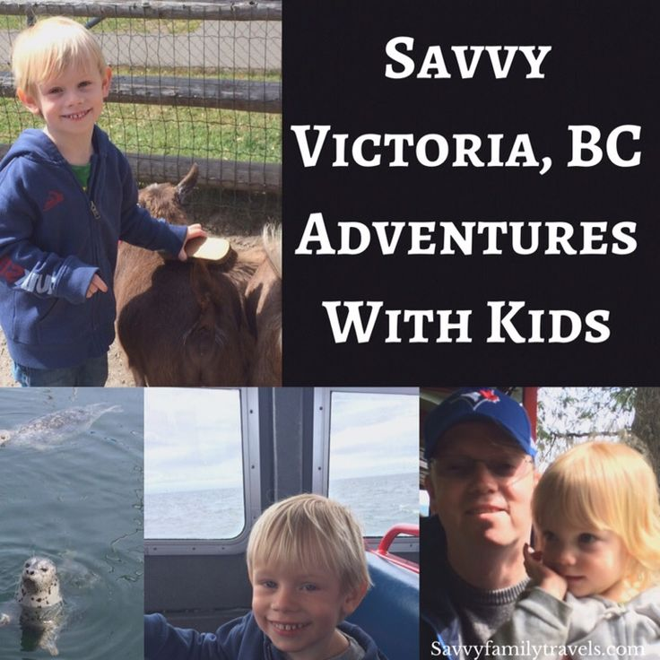 Savvy Victoria, BC Adventures with Kids - Savvy Family TravelsSavvy Family Travels