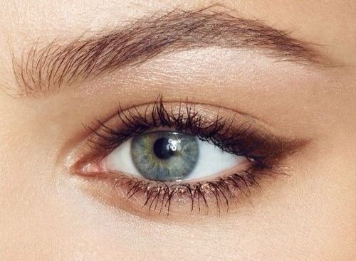 Brown liner. Defined brows. Gold shimmer. Green eyes. Eye makeup. Soft daytime look.