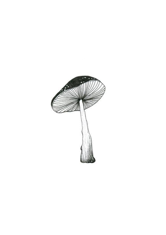 Mushroom.  Art Print
