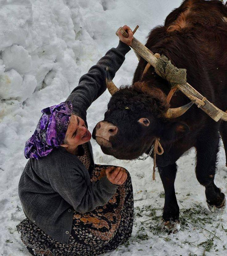 Anadolu'nun sıcak yüzleri  Fotoğrafı gönderen: Soner Kara