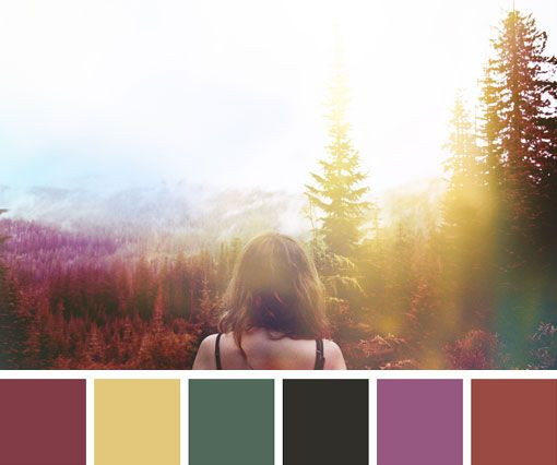 photographer unknown. i love the color swatches combined with the composition.