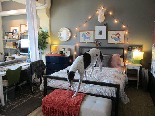 Bachelor Bachelorette Studio Apartment House Home Decor