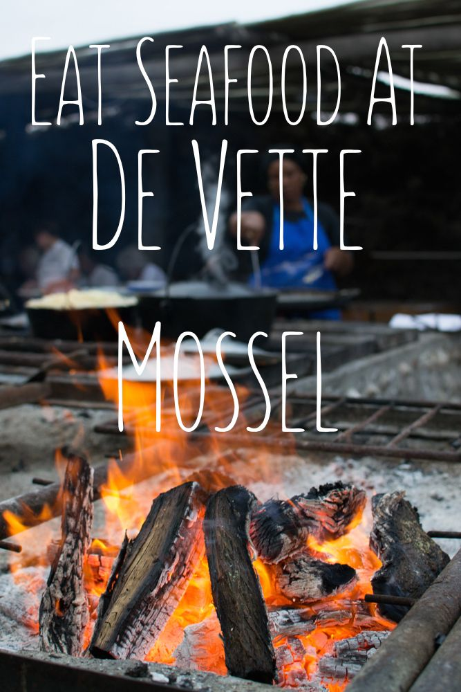 To Do In Joburg - Melanie van Zyl- De Vette Mossel