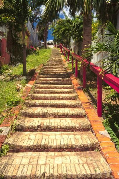 99 Steps in St. Thomas. This step-street was built by the Danes in the 1700s. Follow it to Blackbeard's Castle.: 99 Step St. Thomas, Step Built, Built In, Beautiful View, Blackbeard Castles, Islands Usvi, 1700S, Breathtak View, Virgin Islands