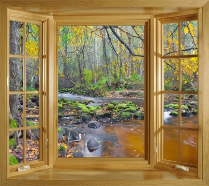 GORGEOUS VIEW OF A RIVER IN THE AUTUMN FOREST WINDOW SCENE WALL MURAL POSTER