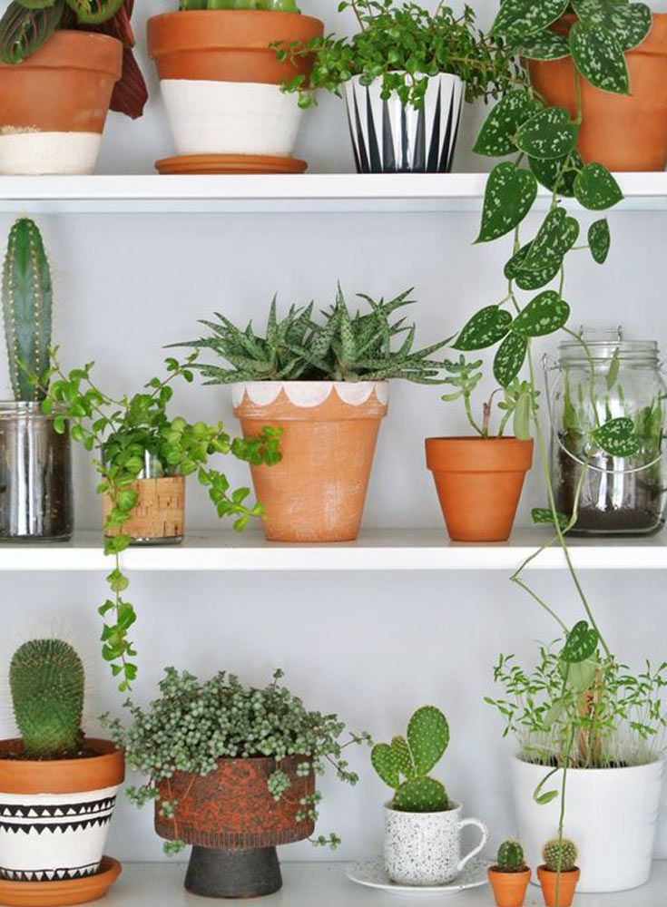 The French Bedroom Company | Urband Jungle Bedroom. We're loving the interiors trend of house plants - from concrete planters, cacti, basket pots, hanging plants, palms and so much green for your home. White kitchen shelves with pot plants in ceramic painted pot
