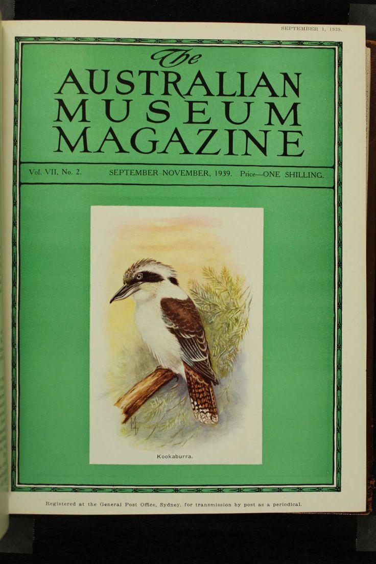 Australian-Museum-Magazine. The Kookaburra. Illustrator: Lilian Medland. http://australianmuseum.net.au/Australian-Museum-Magazine-1921-1942/