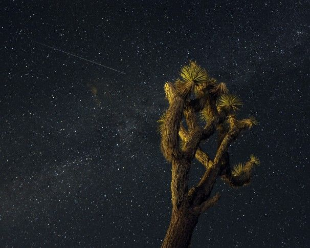 A meteor streaks across the sky over the Mojave Desert in Landers, Calif. According to NASA, the Perseid meteor shower, which is an annual event, began to hit its peak late Sunday.