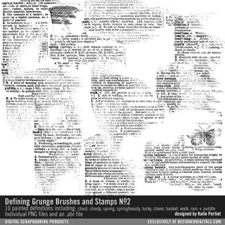 Defining Grunge Brushes and Stamps No. 02- Katie Pertiet Brushes- DS483070- DesignerDigitals