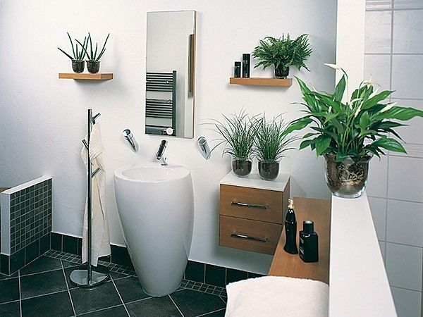 Badezimmer Deko Pflanzen