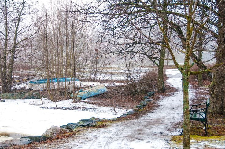 Finnish winter by Graziella Serra Art & Photo on 500px