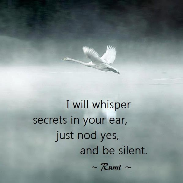 I said, O Love  I am frightened,  but it's not you.  Love said to me,  there is nothing that is not me.    Be silent.    I will whisper secrets in your ear,  just nod yes,  and be silent.    ~ Rumi ~
