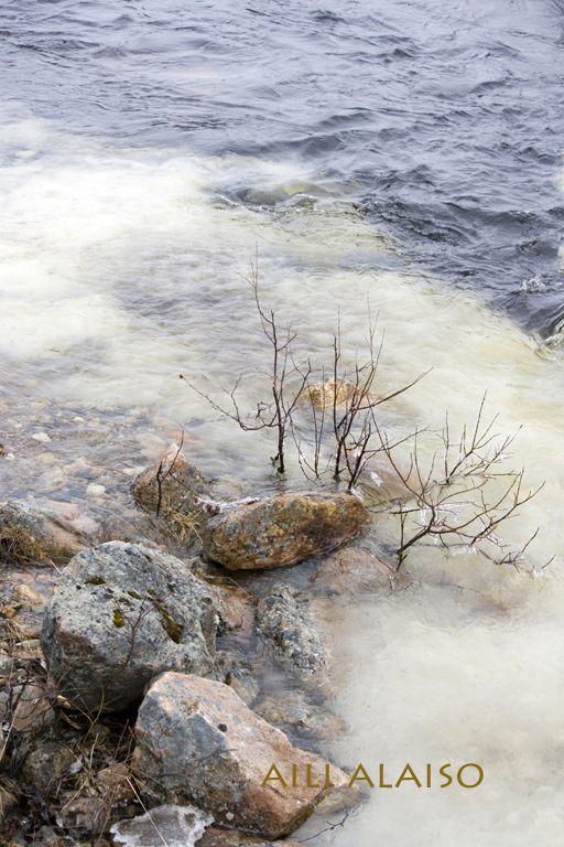 In the River, Karasjok, Norway