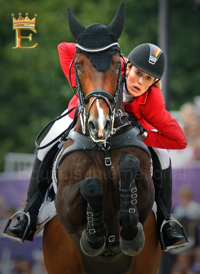 The horse us focused & in control...the rider using pure will power.