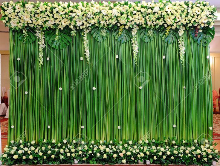 Amazing Backdrop Idea All Plants Bamboo