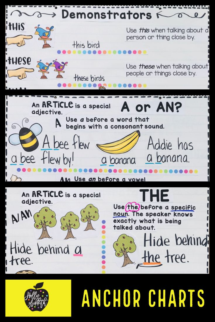 Teach students to use determiners with this engaging hands-on resource.  This bundl…   Grammar for kids [ 1102 x 735 Pixel ]