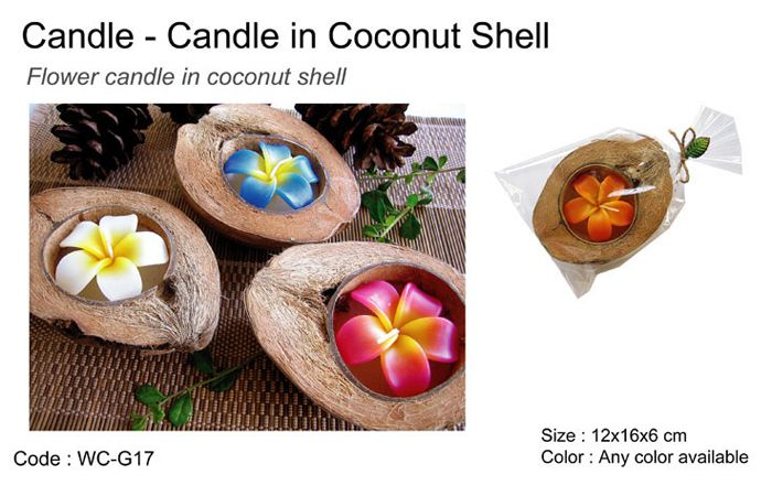 Coconut Candles, Candle In Coconut Shell, Coconut Candle Flower From Thailand, Retail And Wholesale | Wasila Blog