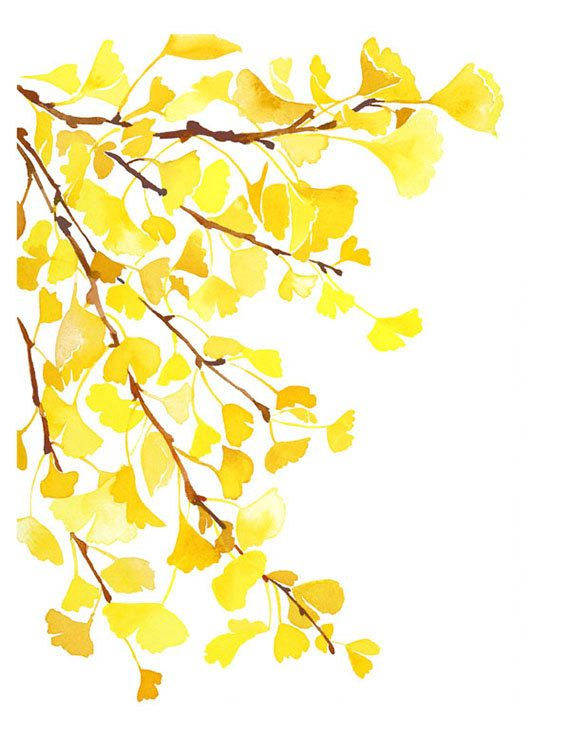 Handmade Watercolor Autumn Fall Yellow Ginkgo Leaves- 8x10 Wall Art Watercolor Print on Etsy, $20.00