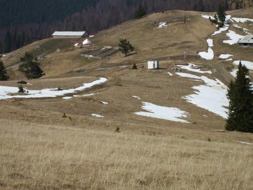 Primăria comunei Borca se luptă pentru recâştigarea a 60 de hectare de păşune situate la graniţa cu localitatea suceveană Mălini, care aparţin de drept localităţii nemţene. Totul depinde însă de sentinţa Înaltei Curţi de Casaţie şi Justiţie şi de o Hotărâre de Guvern.    După 1990, când oamenii din Borca şi-au căutat dreptatea privind o bucată dintr-o păşune situată la graniţa cu comuna Mălini, s-au izbit de refuzul sucevenilor de a o înapoia.
