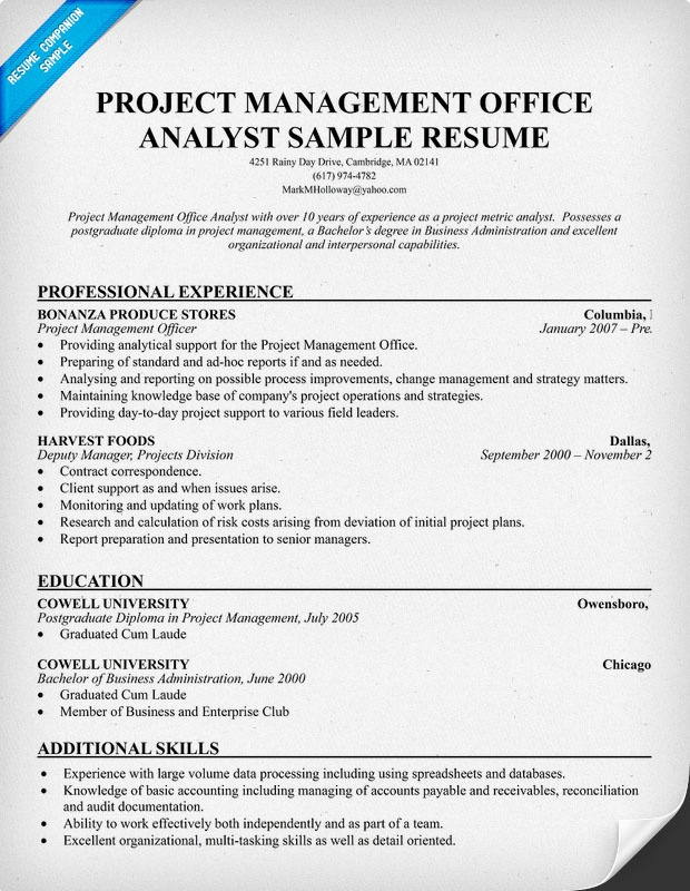 pmo analyst resume resume samples