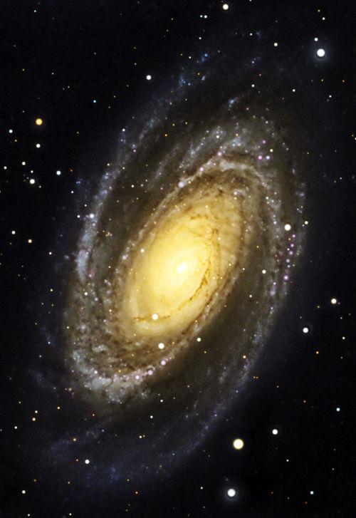 Bode's Galaxy - M81/NGC 3031 Credit: Cheman