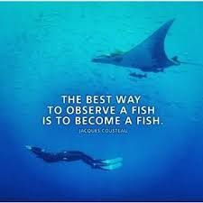 Image result for jacques cousteau quotes #scubadivingquotesunderwater