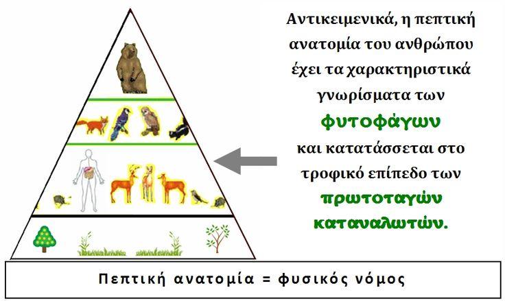 Η βιομηχανική εκτροφή ζώων που ξεκίνησε τον 20 ο  αιώνα, μια πρακτική που αφήνει πίσω της τραγικές συνέπειες για το οικοσύστημα της Γη...