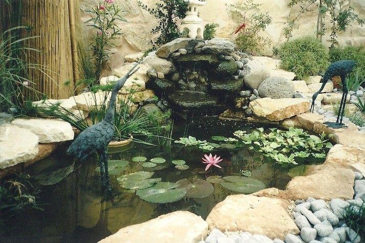 1000 images about garden diy on pinterest gardens for Golden ornamental pond fish