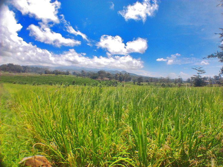 Desa Pundinging, Bissappu Bantaeng, Sulawesi Selatan