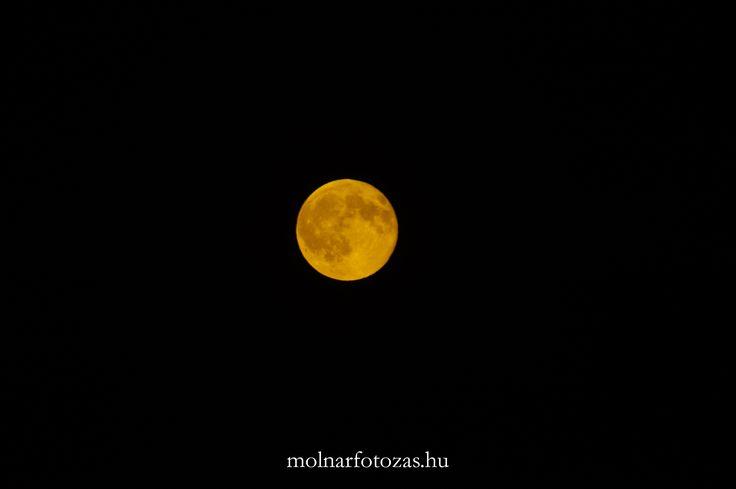 """Amikor ki kell szaladni, mert nagyon ugatnak a kutyák, és """"véletlenül"""" pont kéznél van a fényképezőgép... ;) #night #moon #moonphoto #innow #sky #mystic"""