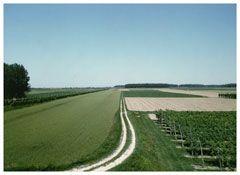 <i>Campagna emiliana</i> From the series <i>Paesaggio italiano</i> and <i>Il profilo delle nuvole</i> 1987-89 Vintage cibachrome 5 1/2 x 7 5/8 inches; 14 x 19 cm