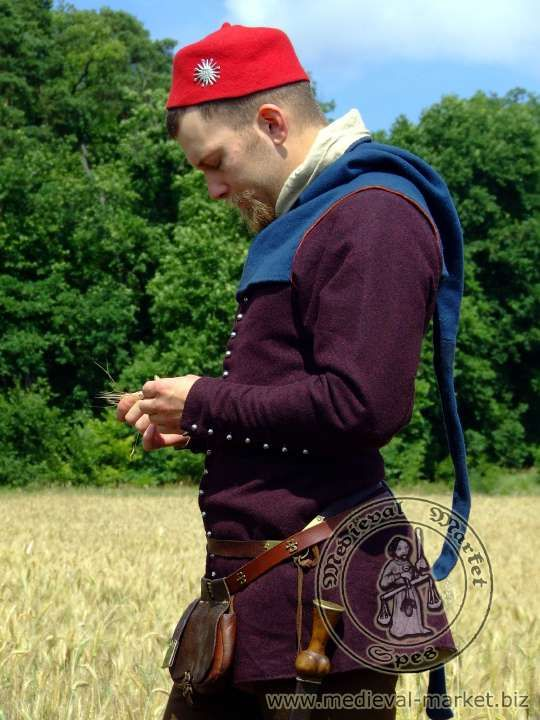 Purple 14th century cote