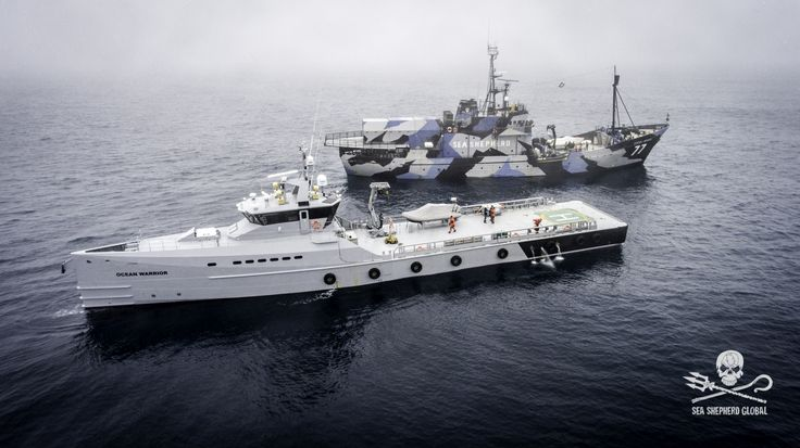 Sea Shepherd ships MY Ocean Warrior and MY Steve Irwin rendezvous in the Southern Ocean during the current anti-whaling campaign, Operation Nemesis.