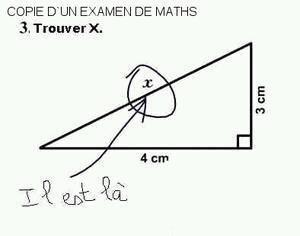Copie d'un examen de maths : Au moins, celui-ci à de l'humour à défaut d'avoir une intelligence mathématique !