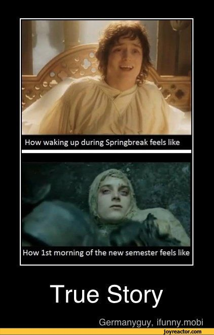 lord of the rings jokes   ... ,funny pictures,auto,demotivation,The Lord of the Rings,study,college