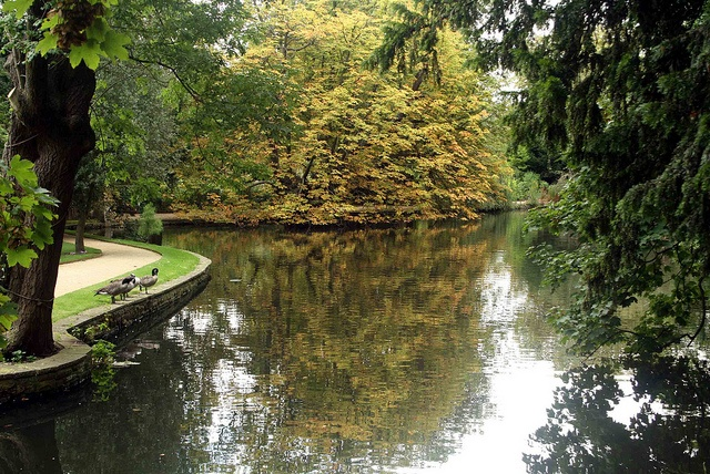 Worcester College Lake