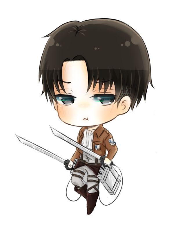 Captain Levi Wallpaper Cleaning