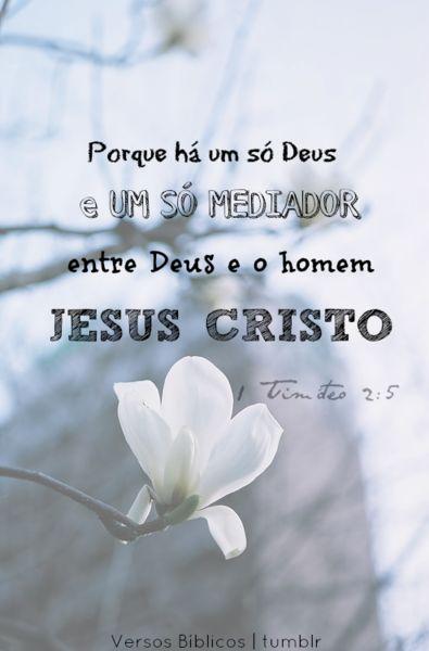 Porque há um só Deus, e um só Mediador entre Deus e os homens, Jesus Cristo homem. 1 Timóteo 2:5
