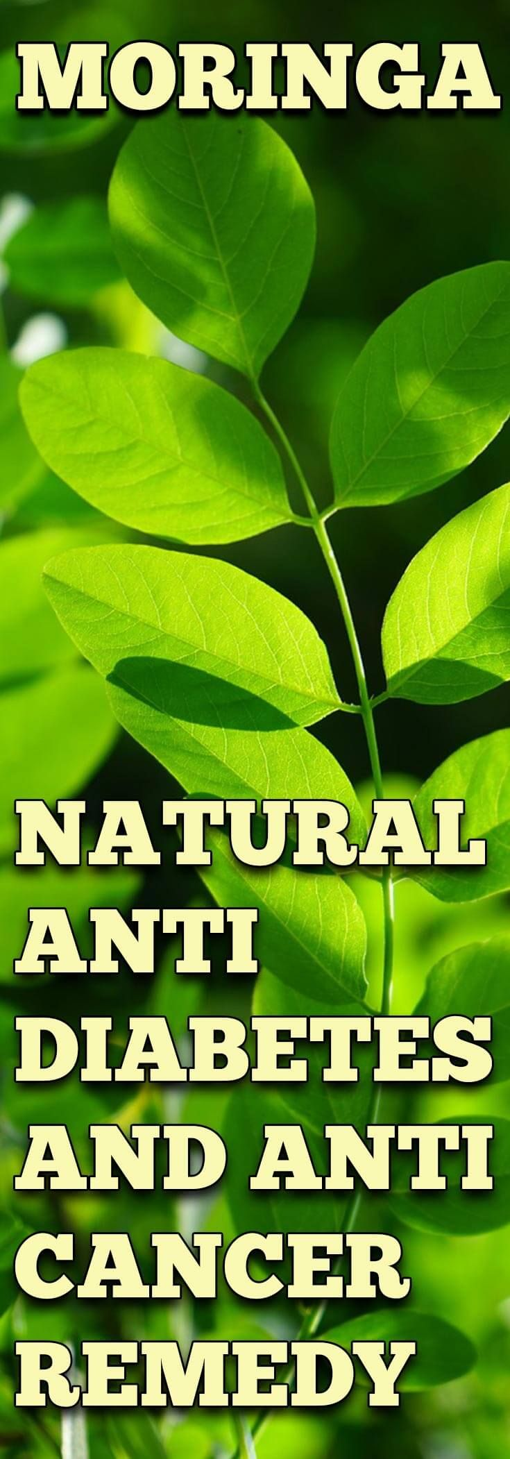 This nature given medicine is called Moringa Oleifera and is a native plant for South Asia. It has been part of their homemade medicine practice for a long time