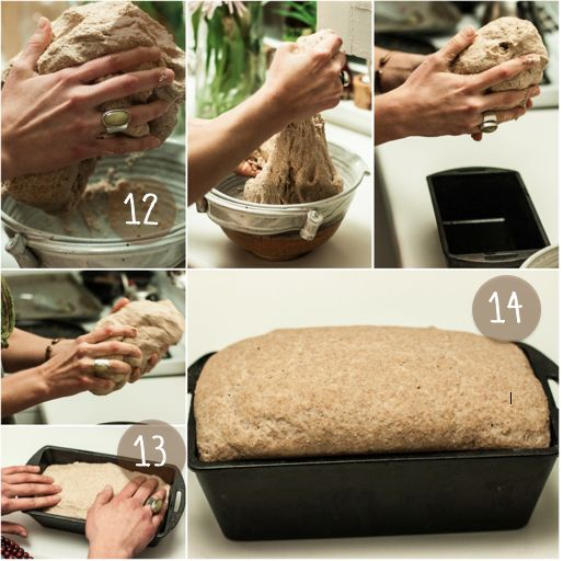 HEALTHY WHOLE WHEAT SANDWICH LOAF BREAD I want to share the joy that making my own bread has brought me . . . with everyone! 5.5 cups whole wheat flour  2 cups all-purpose flour  4 cups lukewarm water  1 tablespoon salt    1.5 tablespoons granulated yeast