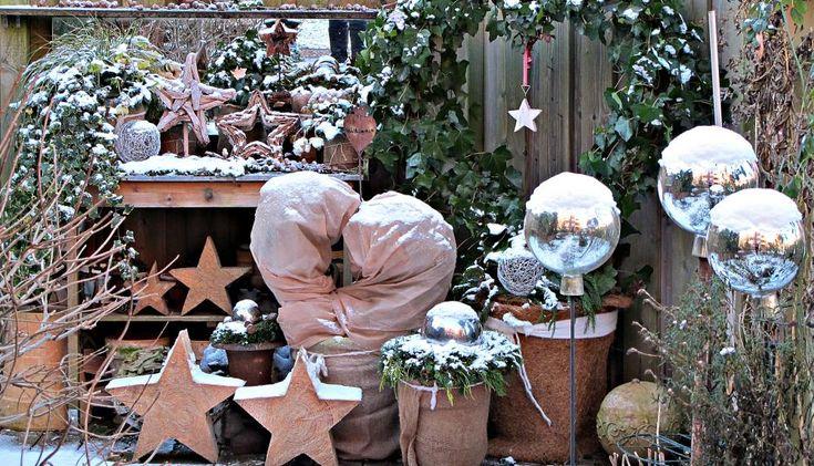 Winterharte Kübelpflanzen für die Terrasse - Wir bleiben draußen!