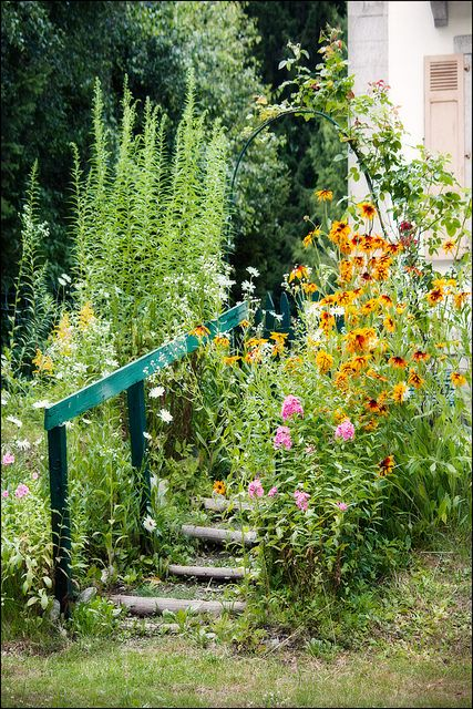 ? The edge of D's workshop? But heavier use of yellows and sunflowers in raised bed if sunny enough?