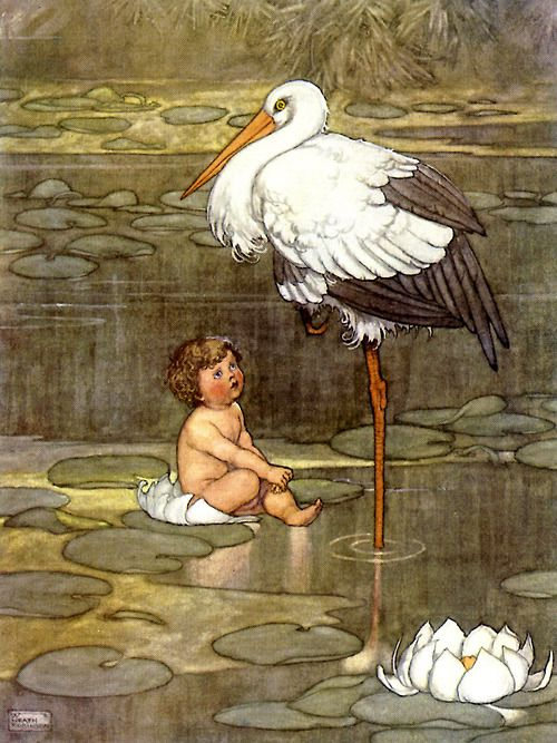 Hans Christian Andersen's The Marsh King's Daughter illustrated by William Heath Robinson, 1913