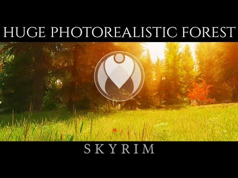 ANCIENT FOREST 4K TEXTURES | Skyrim Ultra High ENB - Photoreal Graphics ...