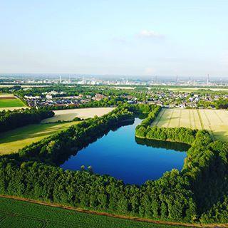 Luftbild vom Waldsee